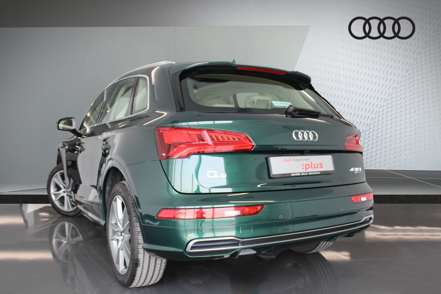 Audi Sport Green Limited Edition #(Ref 5610) - 2019